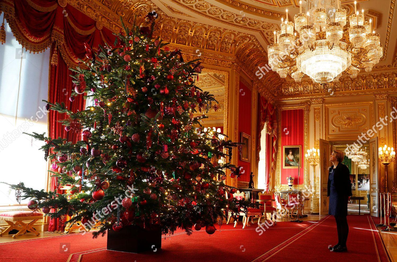 15 Ft Christmas Tree.Woman Looks 15ft Christmas Tree Crimson Drawing Editorial