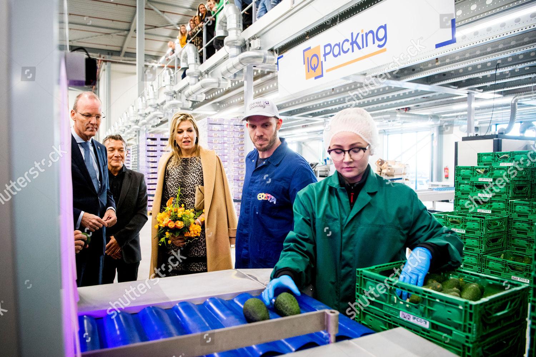 queen-maxima-visit-to-eosta-waddinxveen-the-netherlands-shutterstock-editorial-10013547j.jpg