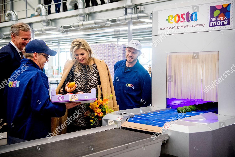 queen-maxima-visit-to-eosta-waddinxveen-the-netherlands-shutterstock-editorial-10013547k.jpg