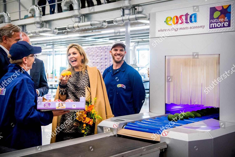 queen-maxima-visit-to-eosta-waddinxveen-the-netherlands-shutterstock-editorial-10013547l.jpg