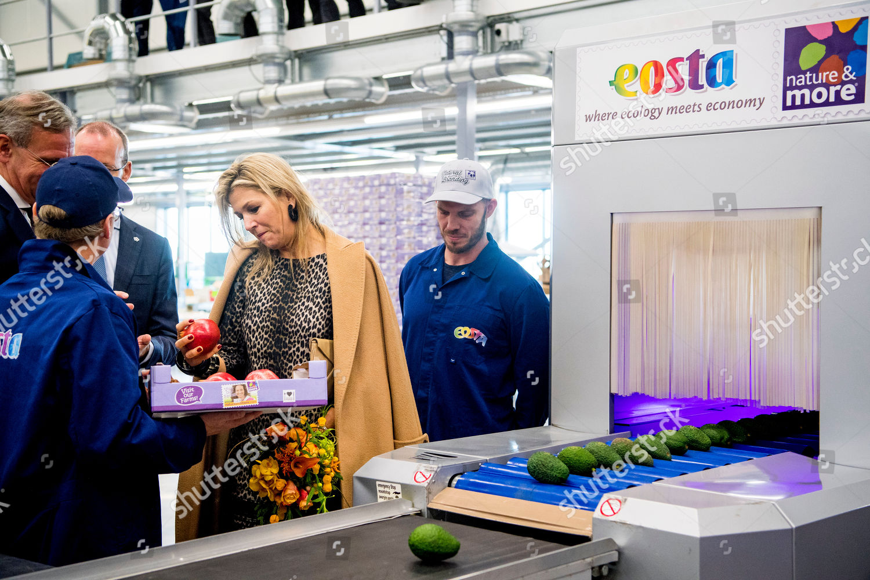 queen-maxima-visit-to-eosta-waddinxveen-the-netherlands-shutterstock-editorial-10013547m.jpg