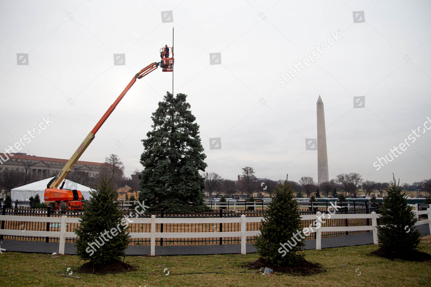 National Christmas Tree 2019.National Christmas Tree Site Dissembled Federal Government