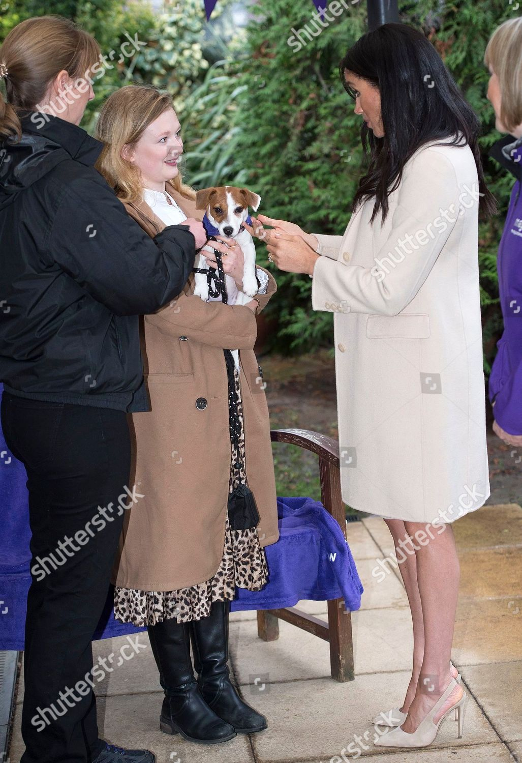 6ae703603fe38 Meghan Duchess of Sussex visit to 'Mayhew' animal welfare charity, London,  UK Stock Image by Shutterstock for editorial use, Jan 16, 2019