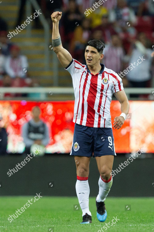 best service 3cbd0 0ed59 Alan Pulido Chivas celebrates after scoring goal Editorial ...