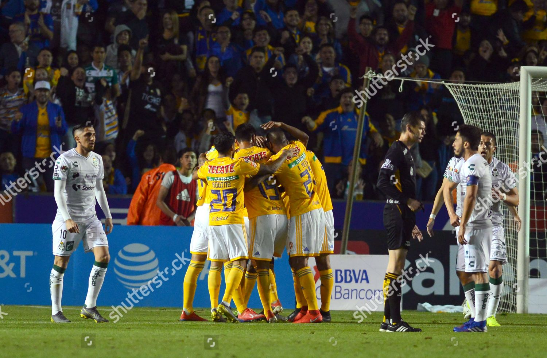 Tigres UANL players celebrate goal during 2019 Stock Photo ... b42f7b46f