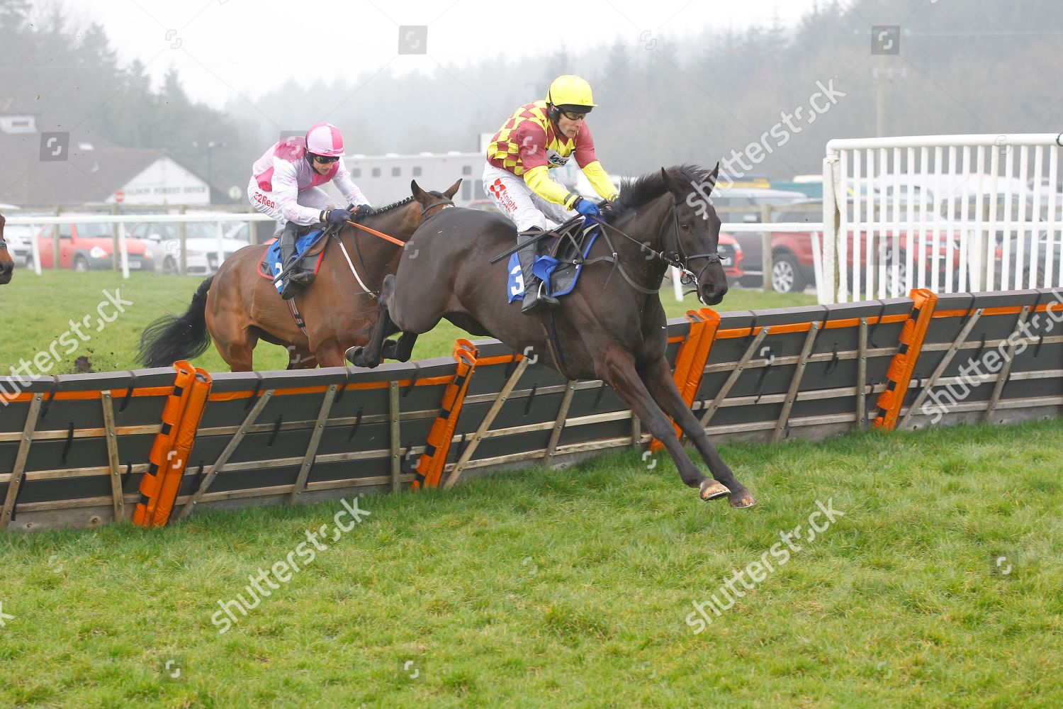 Umbrigado Tom Scudamore win GG Tips Novices Editorial Stock