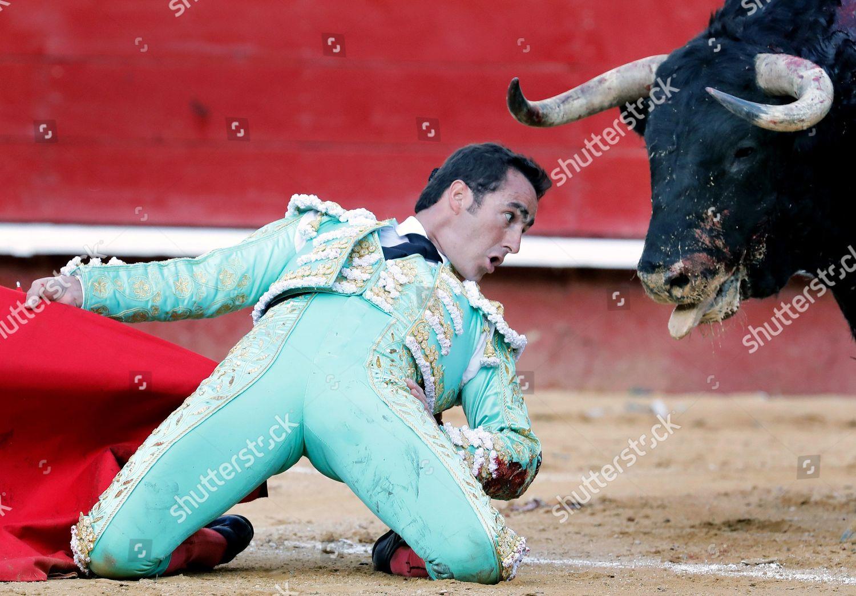 Spanish bullfighter El Fandi fights against bull Editorial Stock