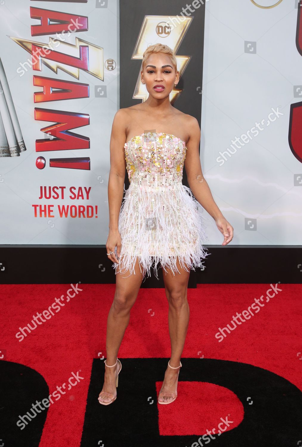 272b05aba 'Shazam' Film Premiere, Arrivals, TCL Chinese Theatre, Los Angeles, USA  Stock Image by MediaPunch for editorial use, Mar 28, 2019