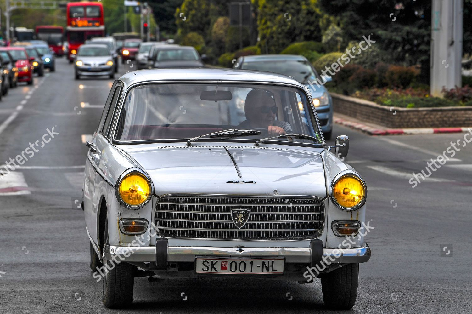 Man Drives His Classic Peugeot 404 Automobile Foto Editorial Imagem De Banco Shutterstock