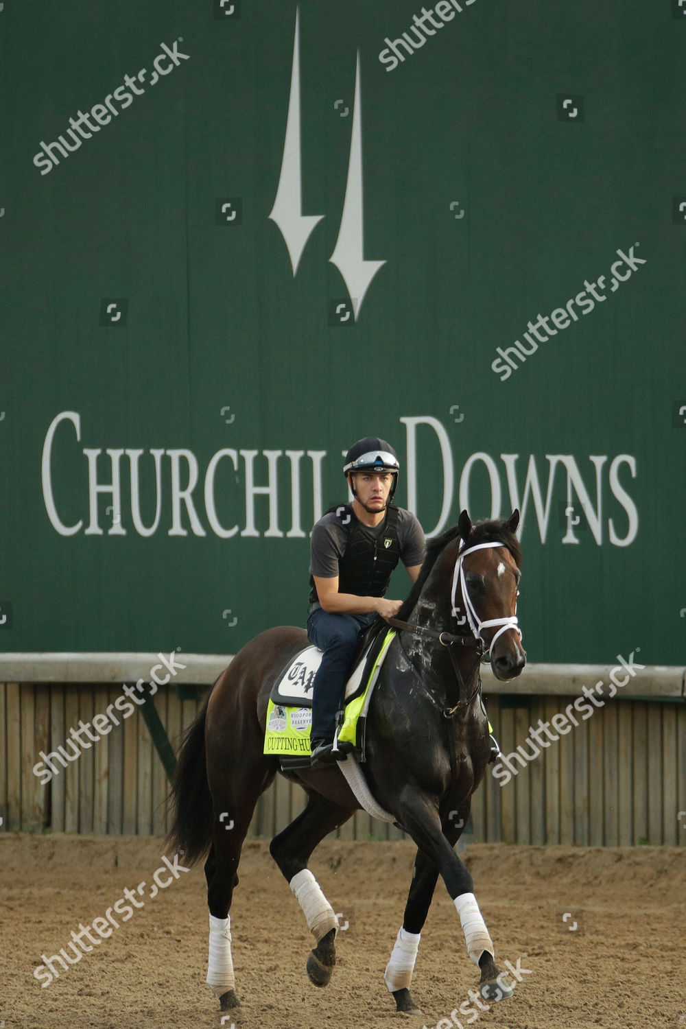 Kentucky Derby Entrant Cutting Humor Walks On Editorial Stock Photo Stock Image Shutterstock
