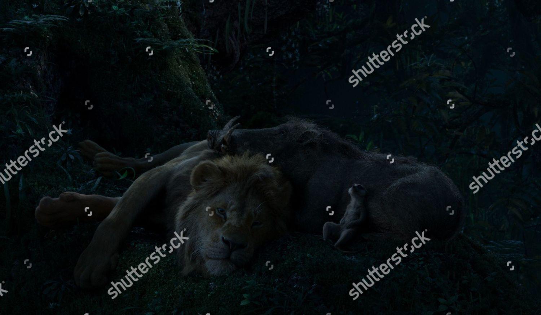 Simba Donald Glover Pumbaa Seth Rogen Timon Editorial Stock