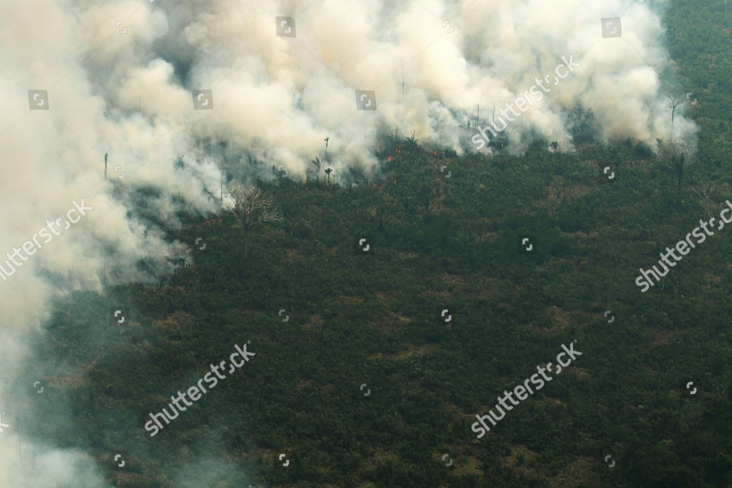 Aerial view smoke Amazon forest during fire Editorial Stock
