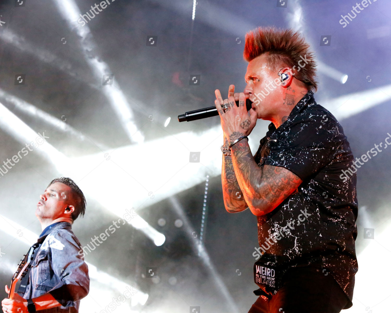 Stock photo of Papa Roach in concert, Farm Bureau Insurance Lawn, White River State Park, Indianapolis, USA - 21 Aug 2019