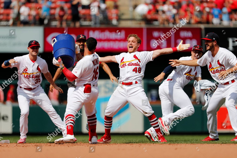 St Louis Cardinals Harrison Bader 48 celebrates Editorial
