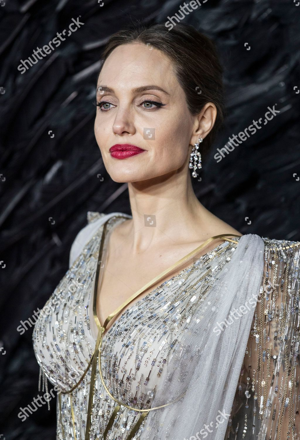 Angelina Jolie Editorial Stock Photo Stock Image