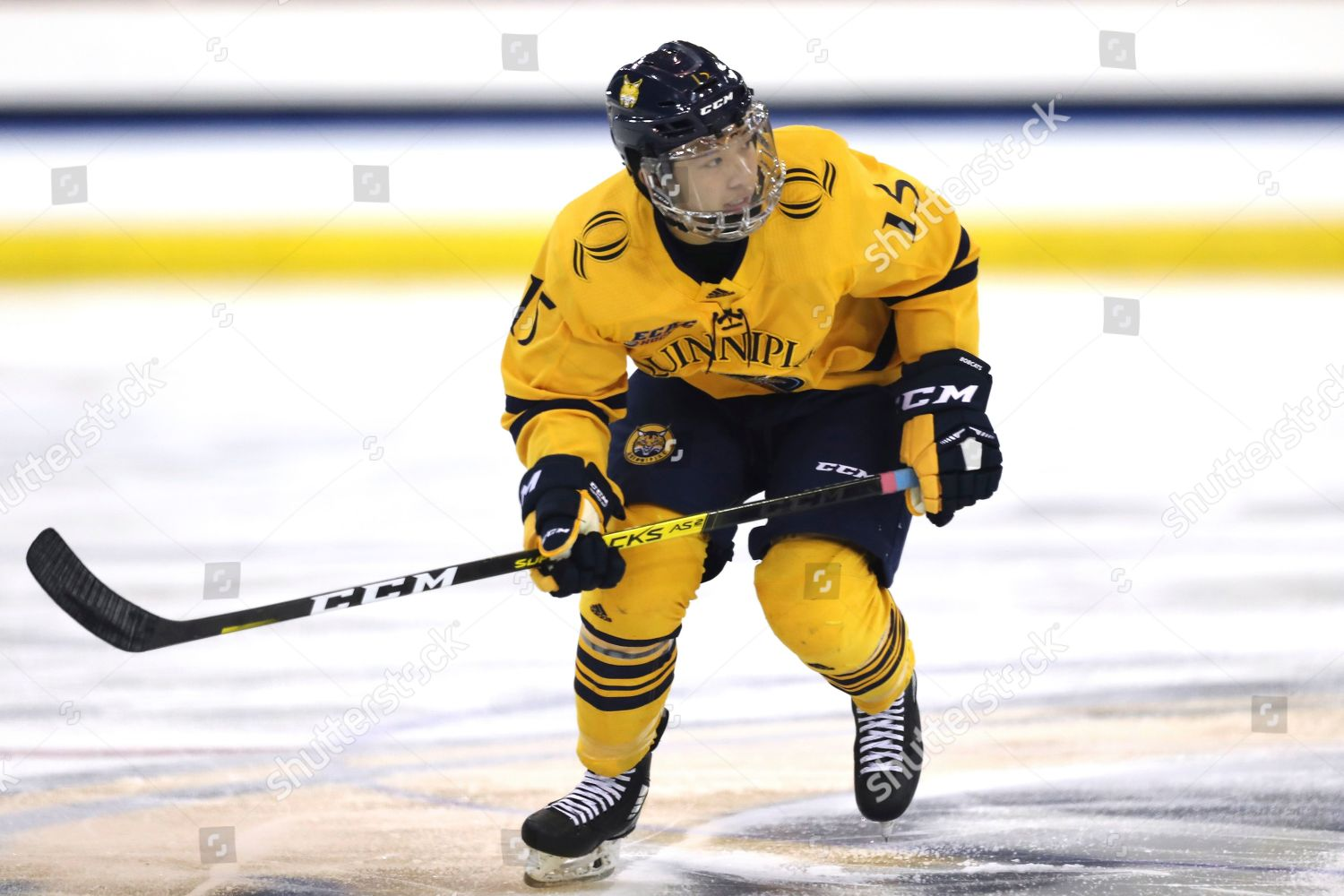 Quinnipiac Defenseman Jayden Lee 15 Skates Ice Editorial Stock Photo Stock Image Shutterstock Jayden lee's profile including the latest music, albums, songs, music videos and more updates. 2