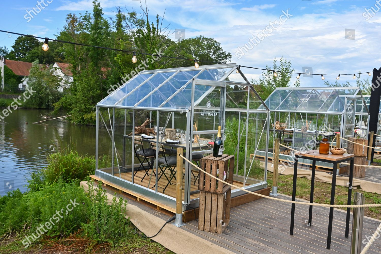 New Restaurant Concept Green House Respect Distance Foto Editorial En Stock Imagen En Stock Shutterstock