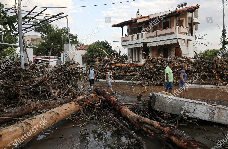картинки наводнение правила сам винод
