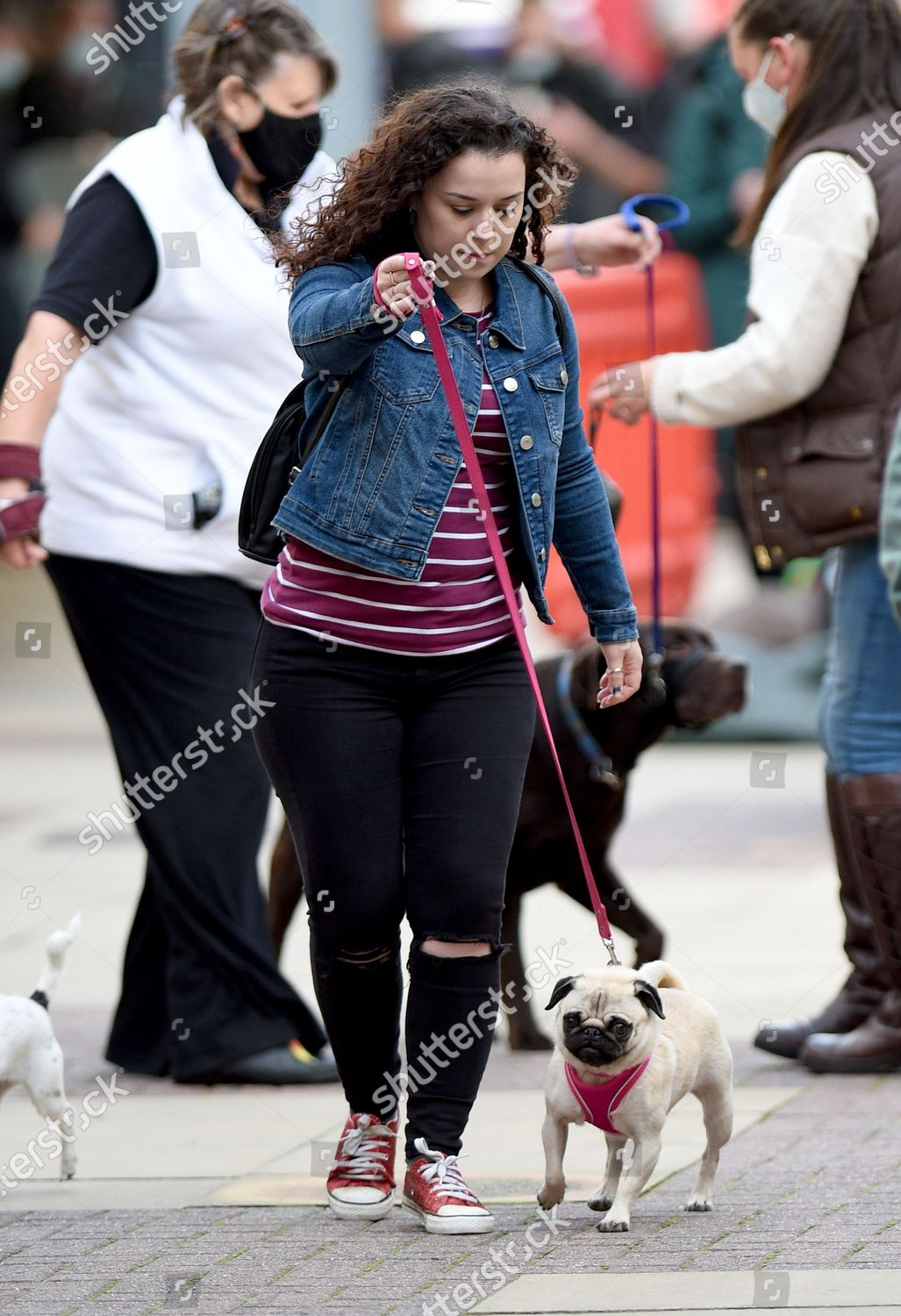 Dani Harmer Continues Film New Series My Editorial Stock Photo Stock Image Shutterstock