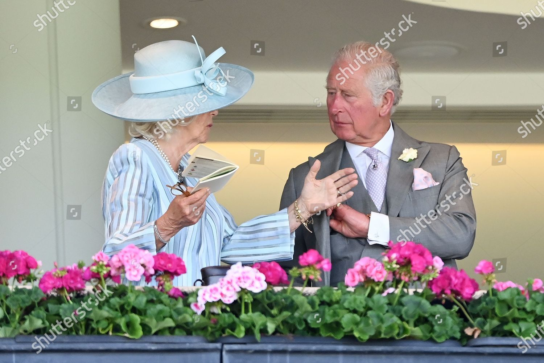 royal-ascot-horse-racing-ascot-racecourse-berkshire-uk-shutterstock-editorial-12079771ai.jpg