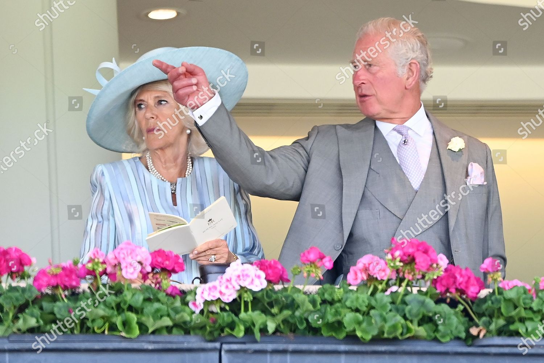 royal-ascot-horse-racing-ascot-racecourse-berkshire-uk-shutterstock-editorial-12079771ak.jpg
