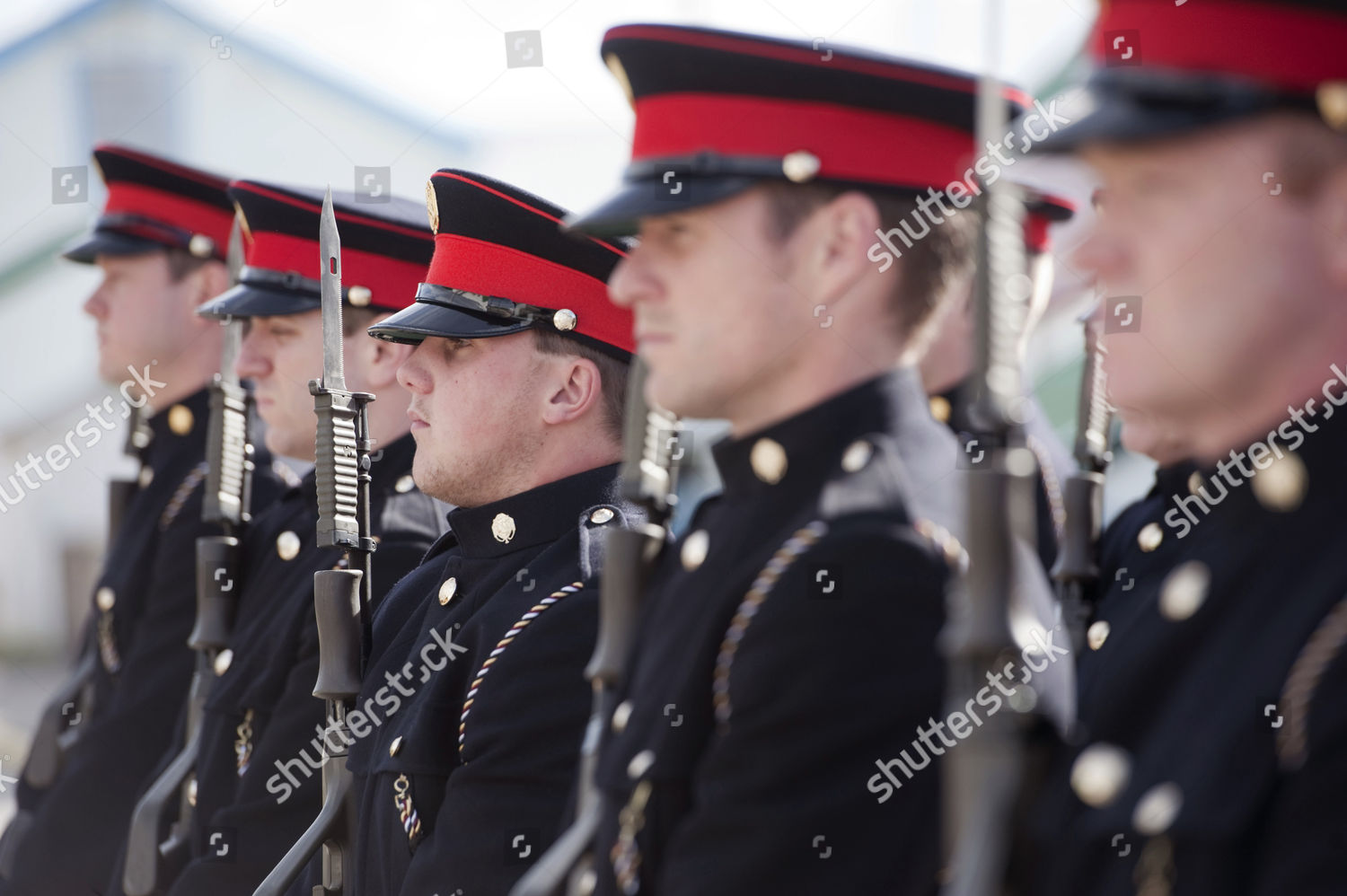 Members Falkland Islands Defence Force Editorial Stock Photo - Stock