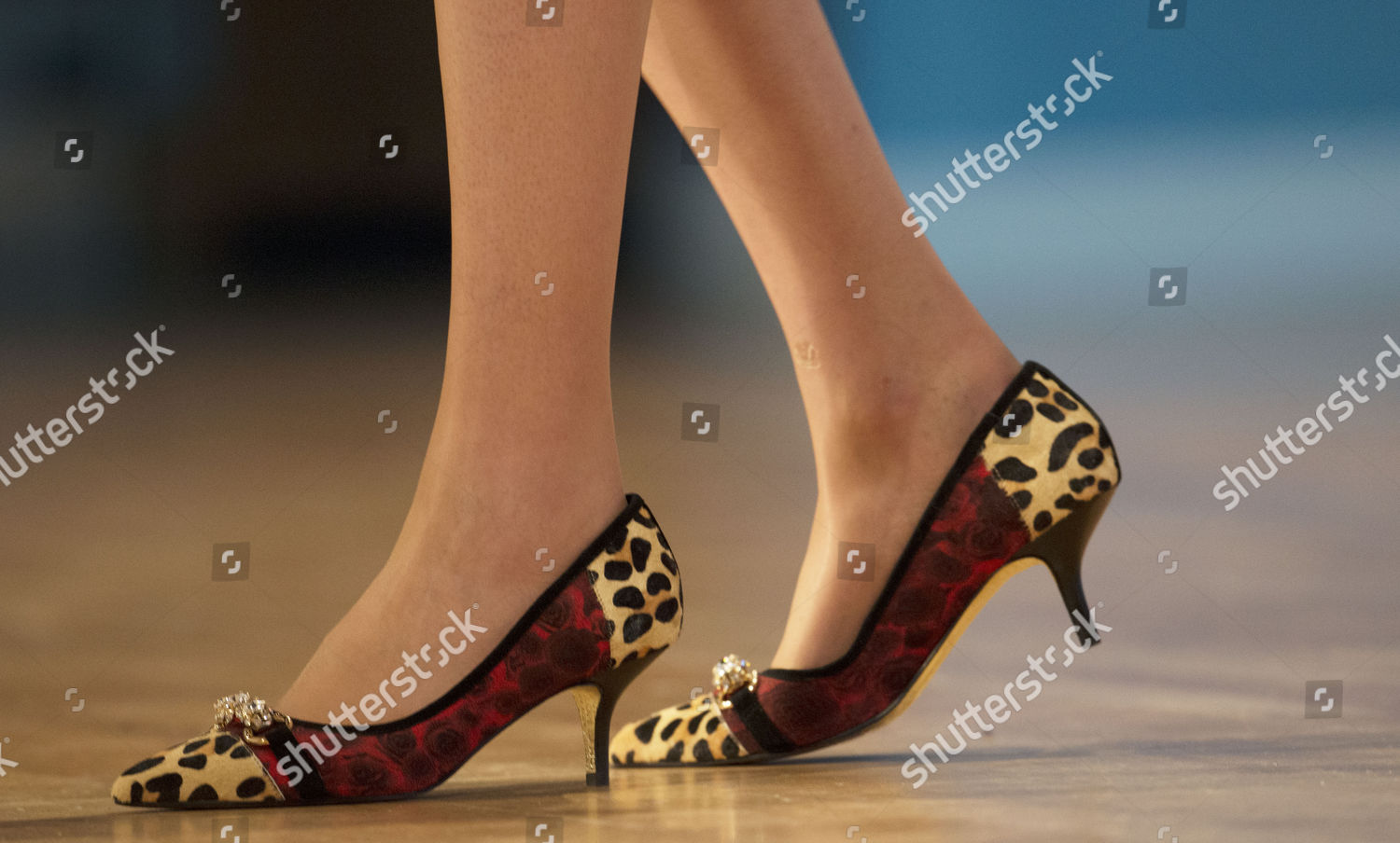 3570d200df1 Home secretary theresa mays leopardskin print shoes editorial stock jpg  1500x904 Tories shoes