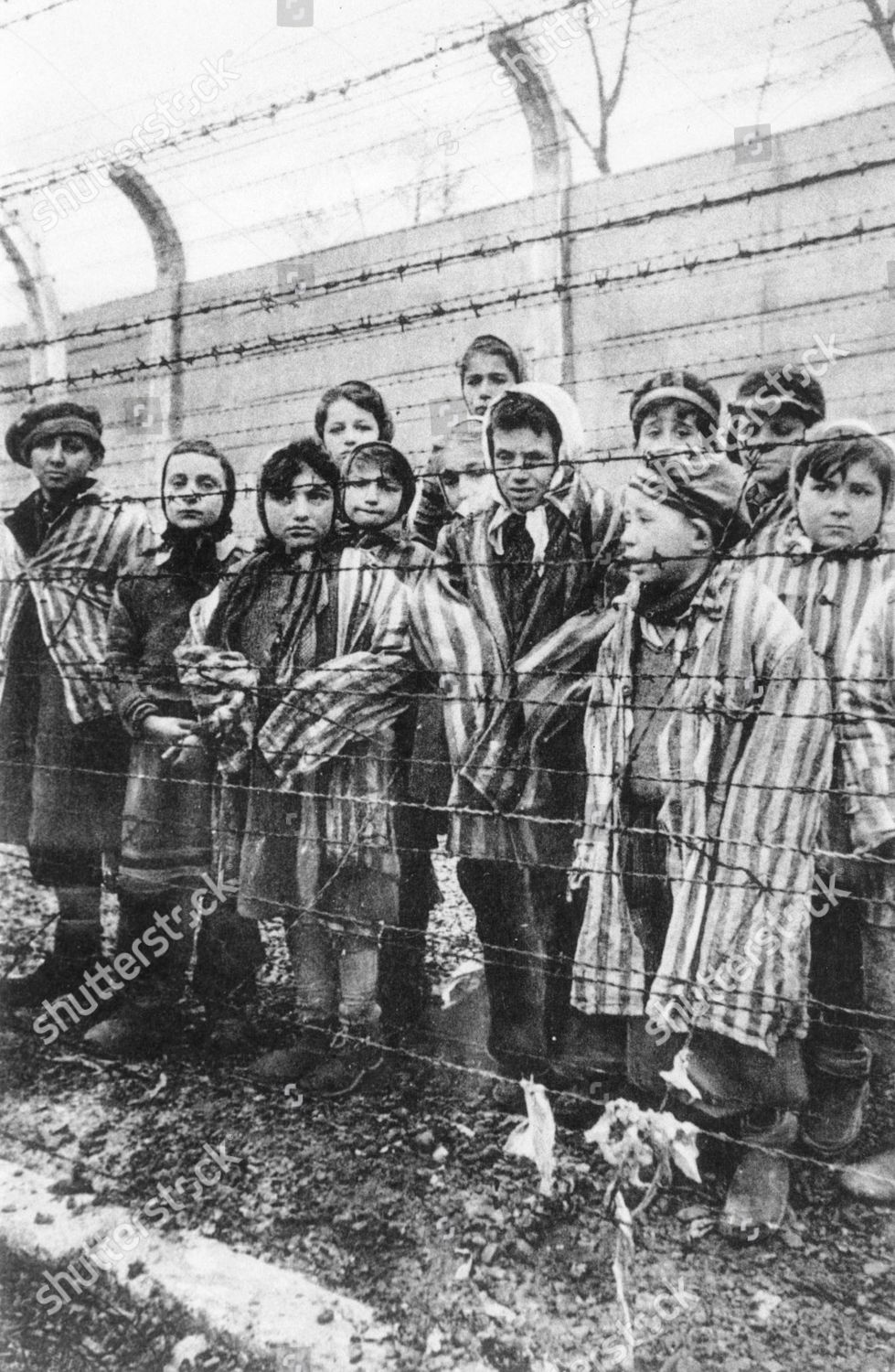 CHILD PRISONERS DIFFERENT COUNTRIES AUSCHWITZ CONCENTRATION