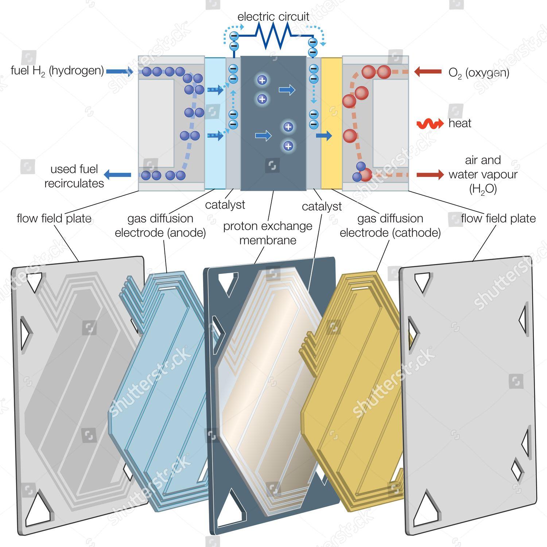 Proton exchange membrane PEM fuel cell Editorial Stock Photo - Stock