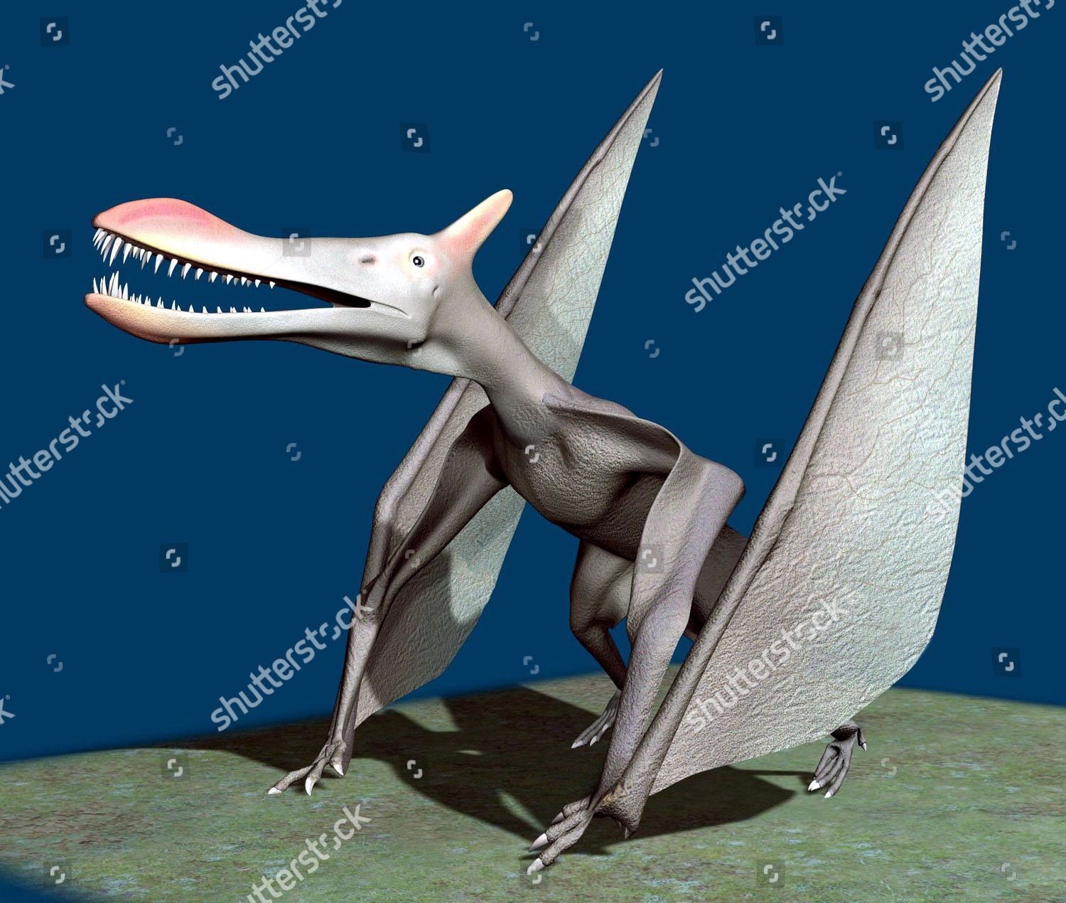 how did pterosaurs move on the ground Quetzalcoatlus (kwet-sal-co-at-lus) was a pterodacyloid pterosaur from the late cretaceous of north america, and the largest known flying animal to have ever lived it was a member of the azhdarchidae, a family of advanced toothless pterosaurs with unusually long, stiffened necks.