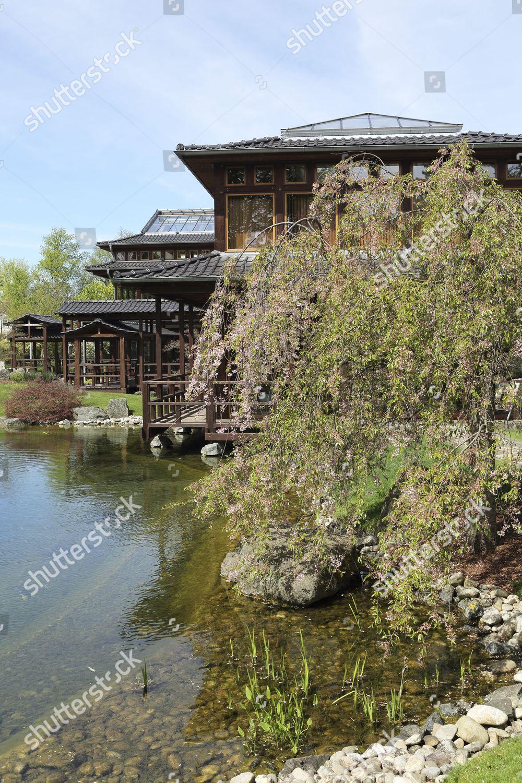 Willow By Pavilion Japanese Garden Japanischer Garten Editorial