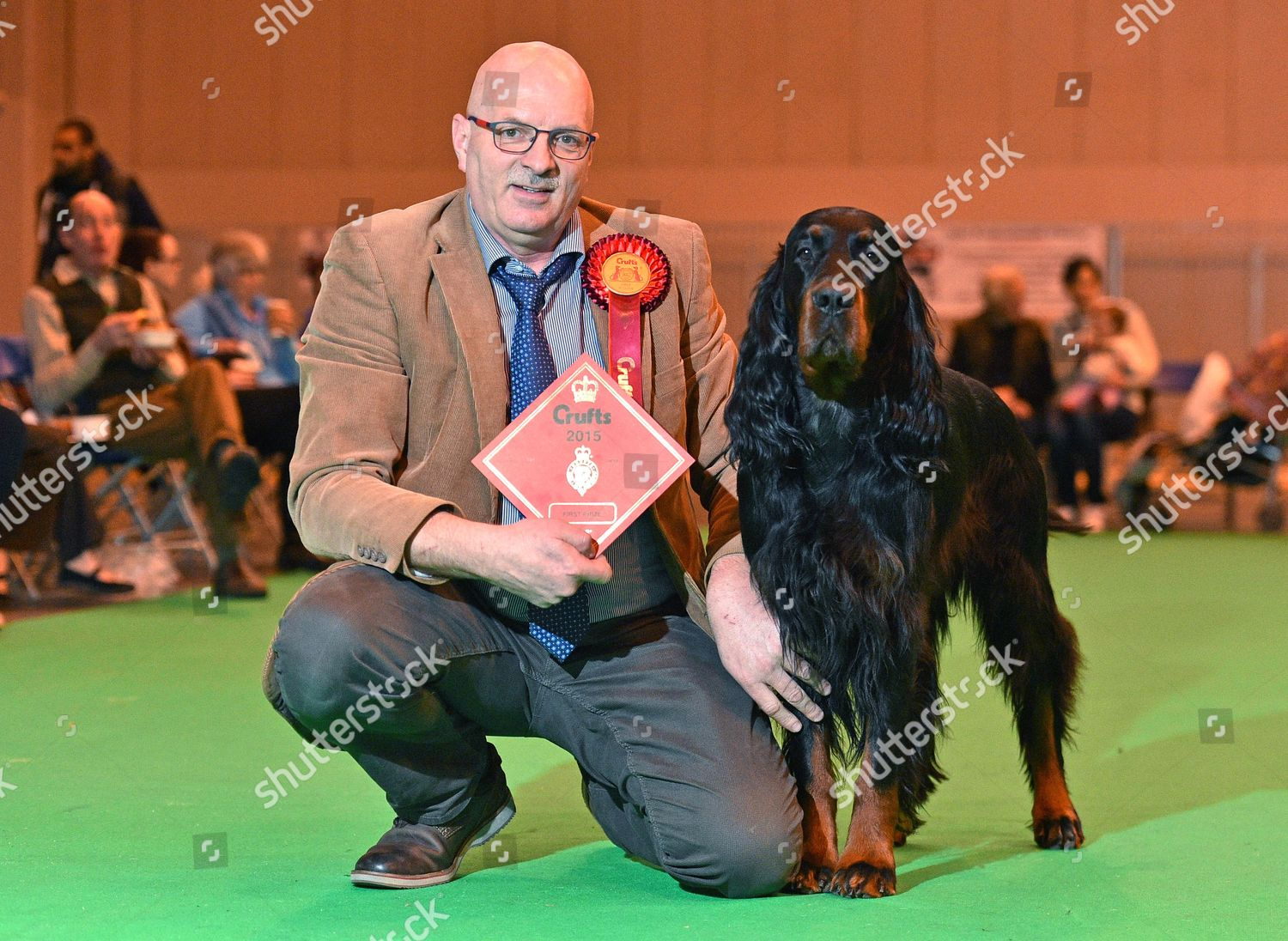 Crufts Dog Show Day 1 Gun Dog Editorial Stock Photo - Stock Image