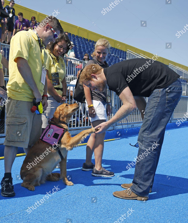 Prince Harry meets medical alert dog Editorial Stock Photo