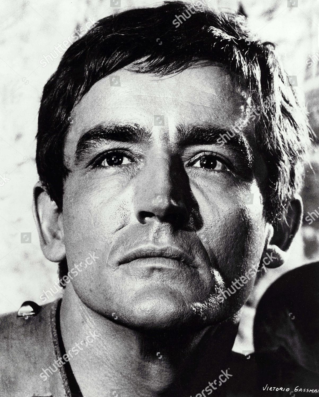 Vittorio Gassman Editorial Stock Photo Stock Image Shutterstock