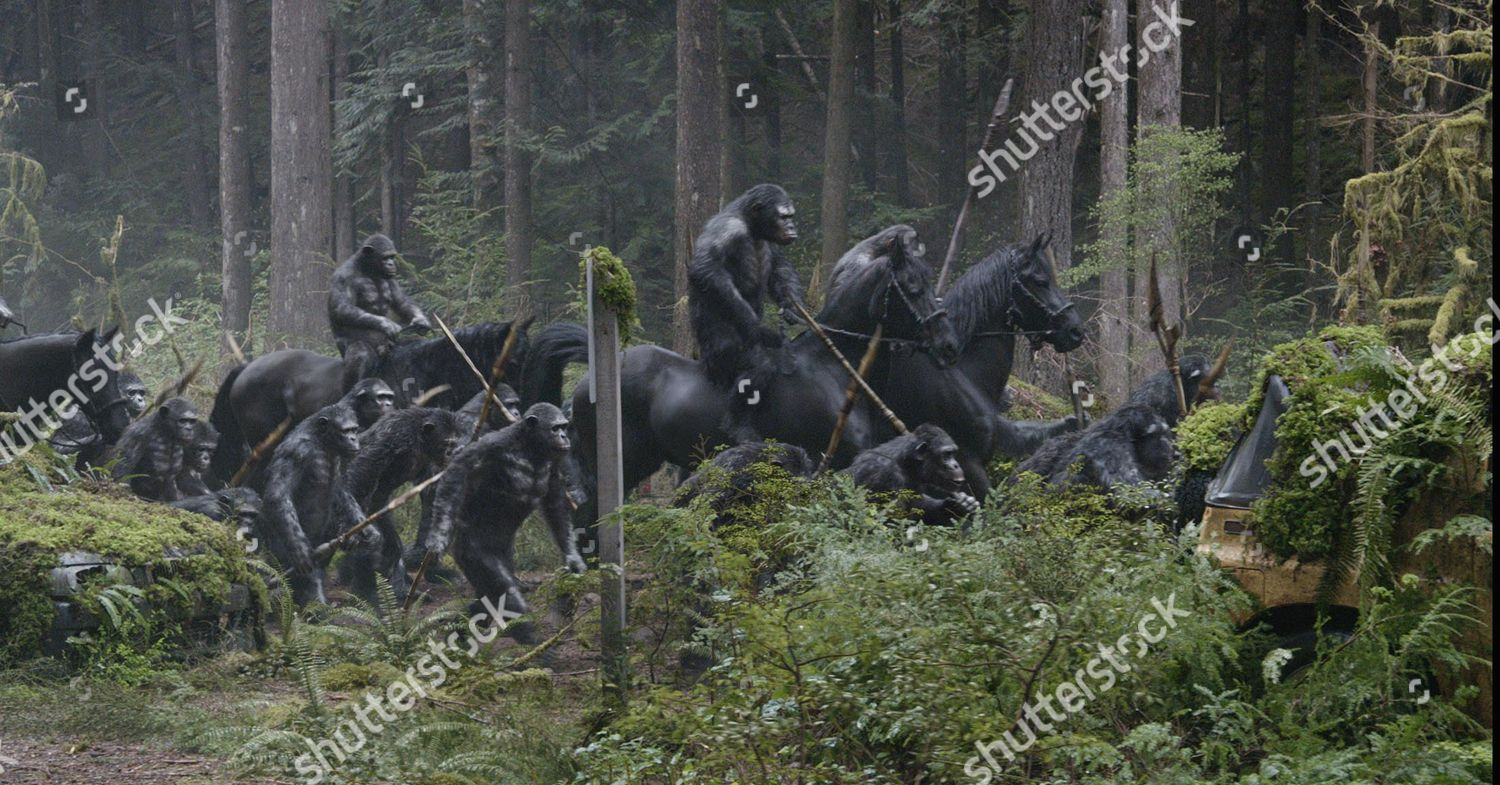 Dawn Planet Apes 2014 Editorial Stock Photo Stock Image Shutterstock