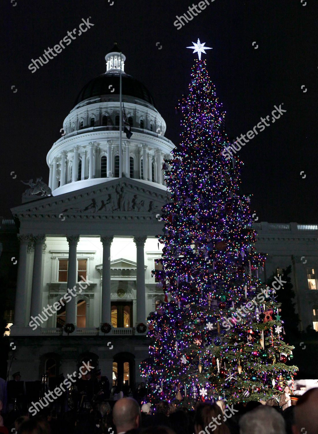 Capitol Christmas Tree.State Capitol Christmas Tree Glows 10000 Ultralow Editorial