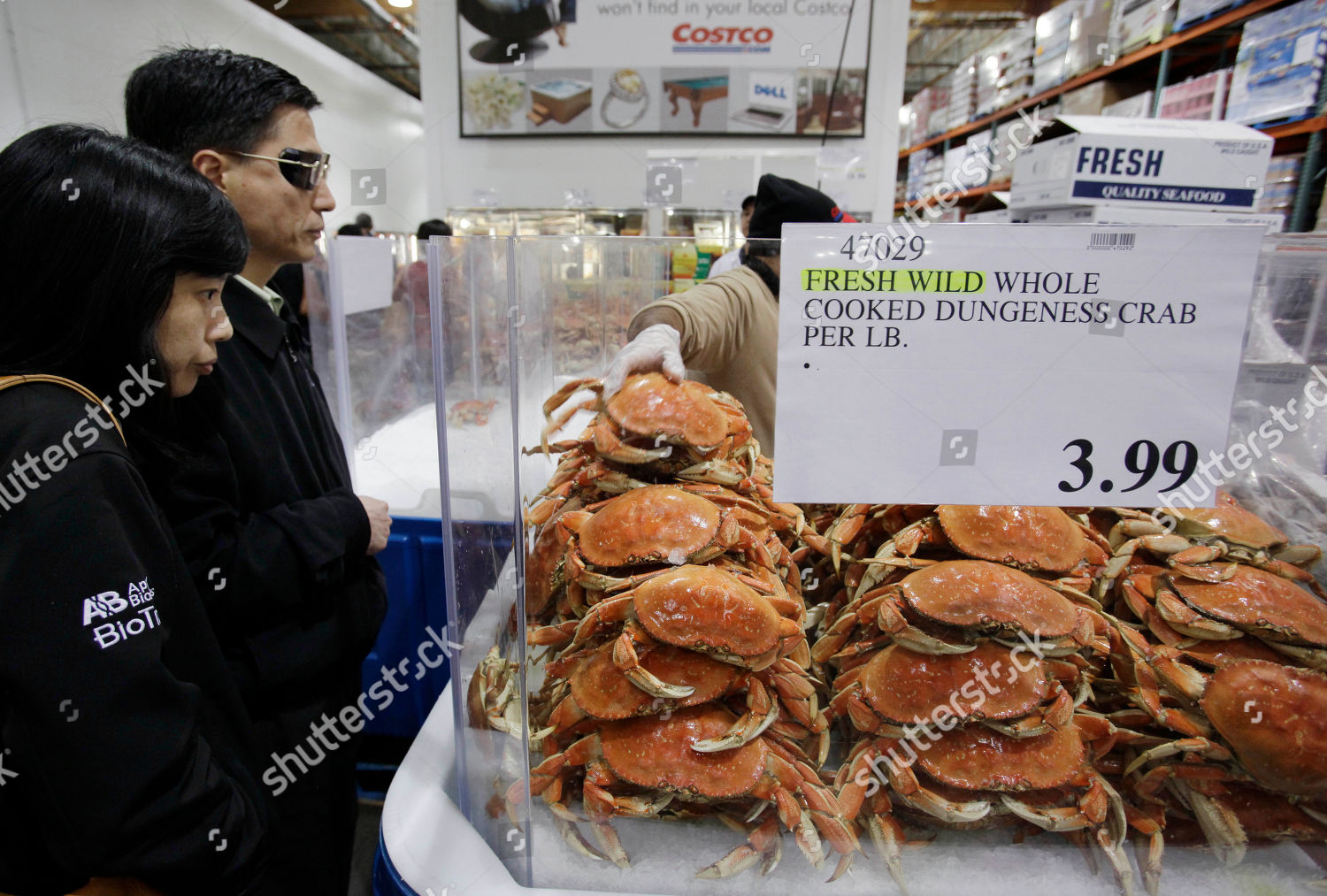 Customers look cooked Dungeness crab sale Costco Editorial
