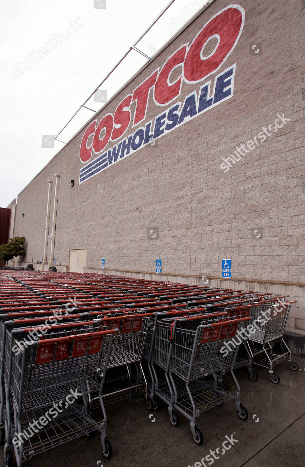 Shopping Carts Lined Outside Costco Mountain View Editorial Stock