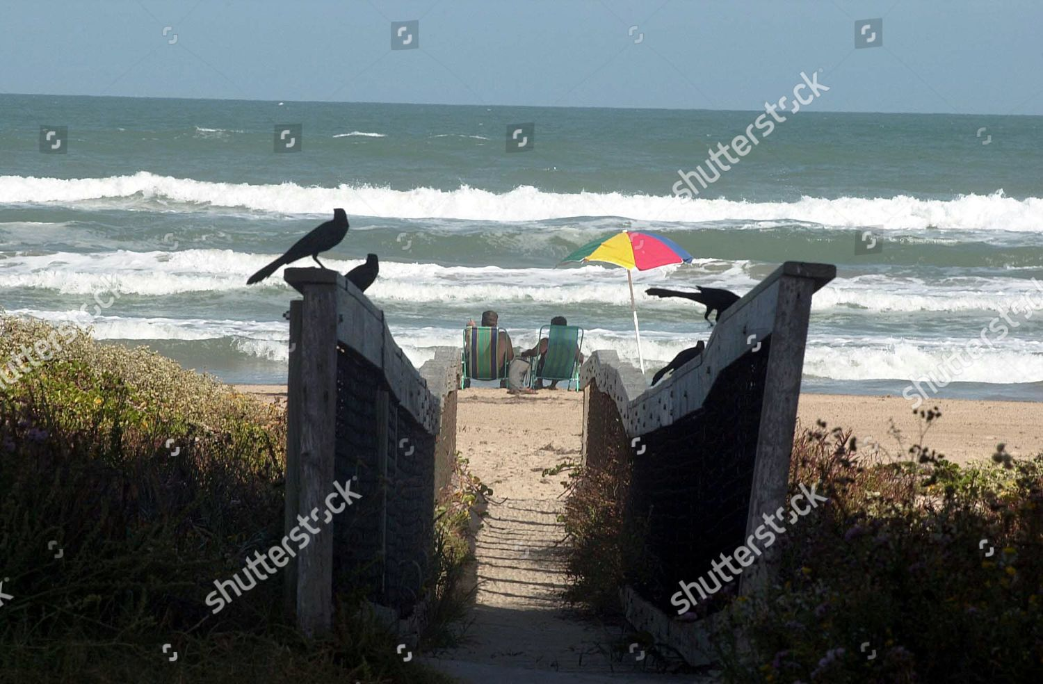 South Padre Island beaches shown have been Editorial Stock