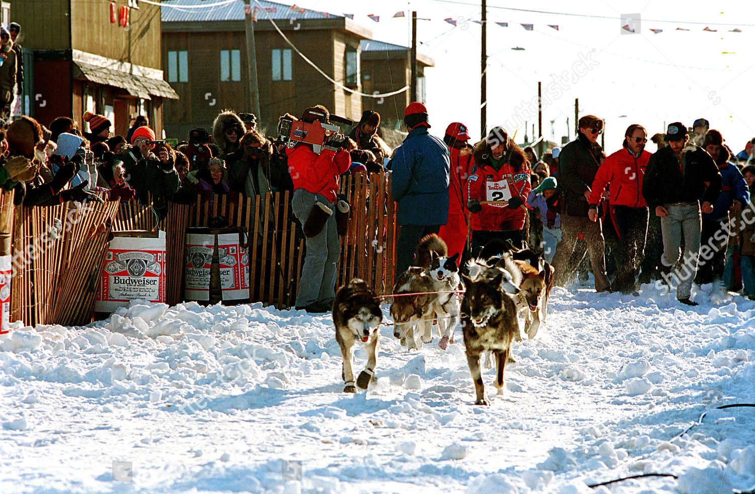 picture Susan Butcher sled dog musher