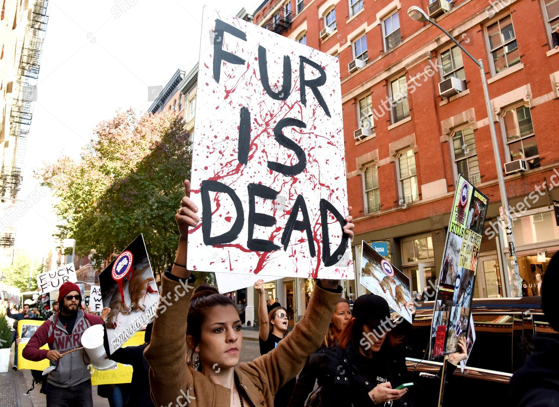 PETA Protestors take action against Canada Goose Editorial
