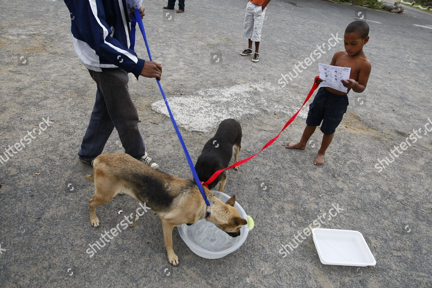 South African Boy Holds Onto His Dog Editorial Stock Photo - Stock