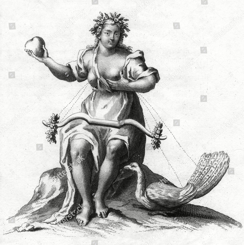 wife of zeus - HD1491×1500