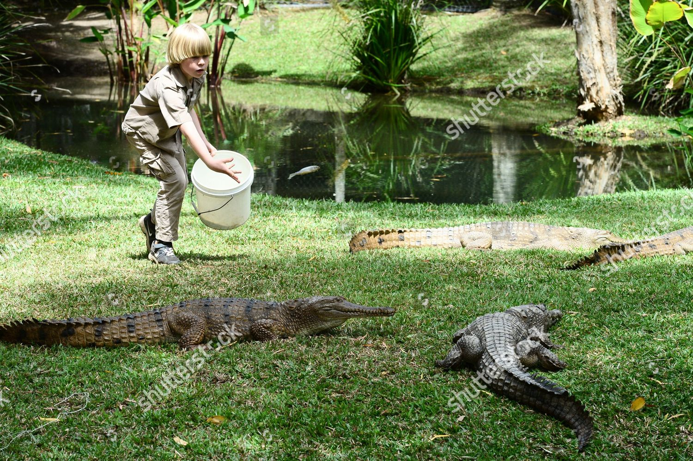 Robert Irwin Eightyearold Son Crocodile Hunter Steve Editorial Stock Photo Stock Image Shutterstock