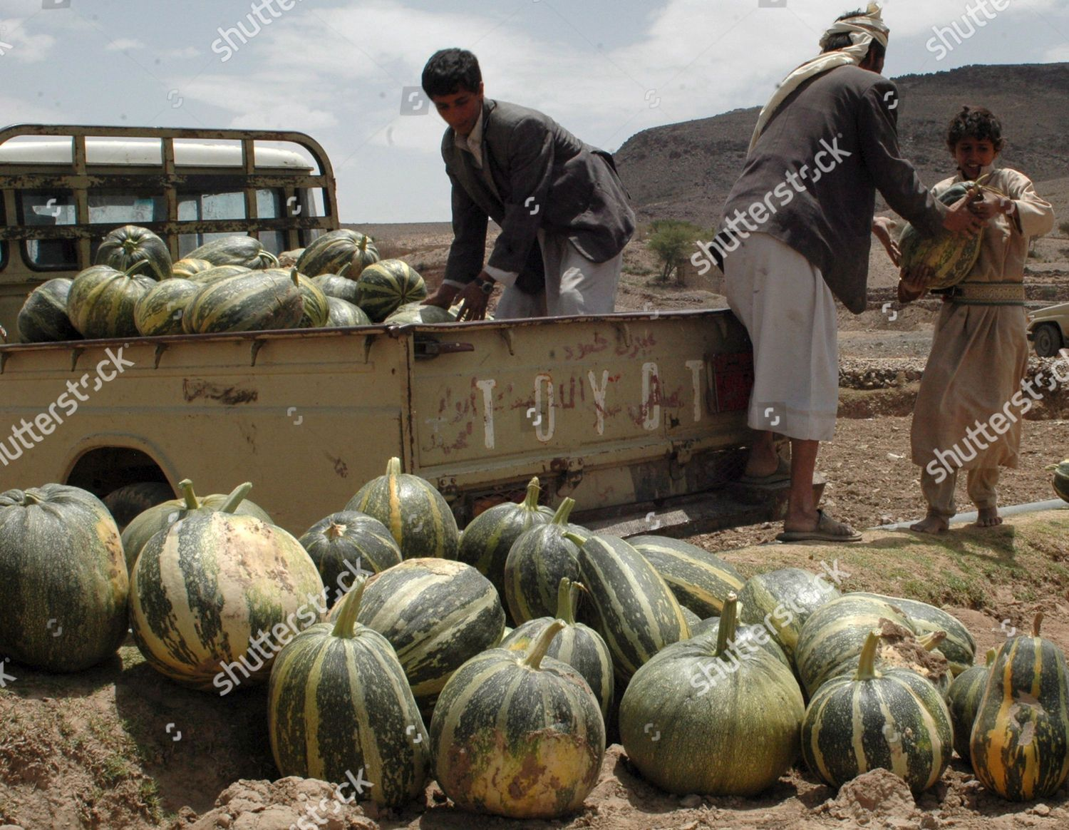 Yemeni Farmer c His Sons Collect Watermelons Editorial Stock Photo