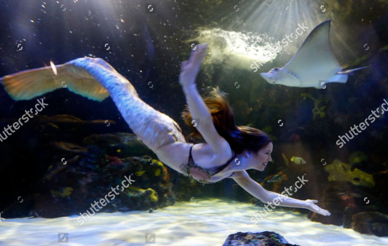 Mermaid Hales Parcells performs Virginia Aquarium Virginia