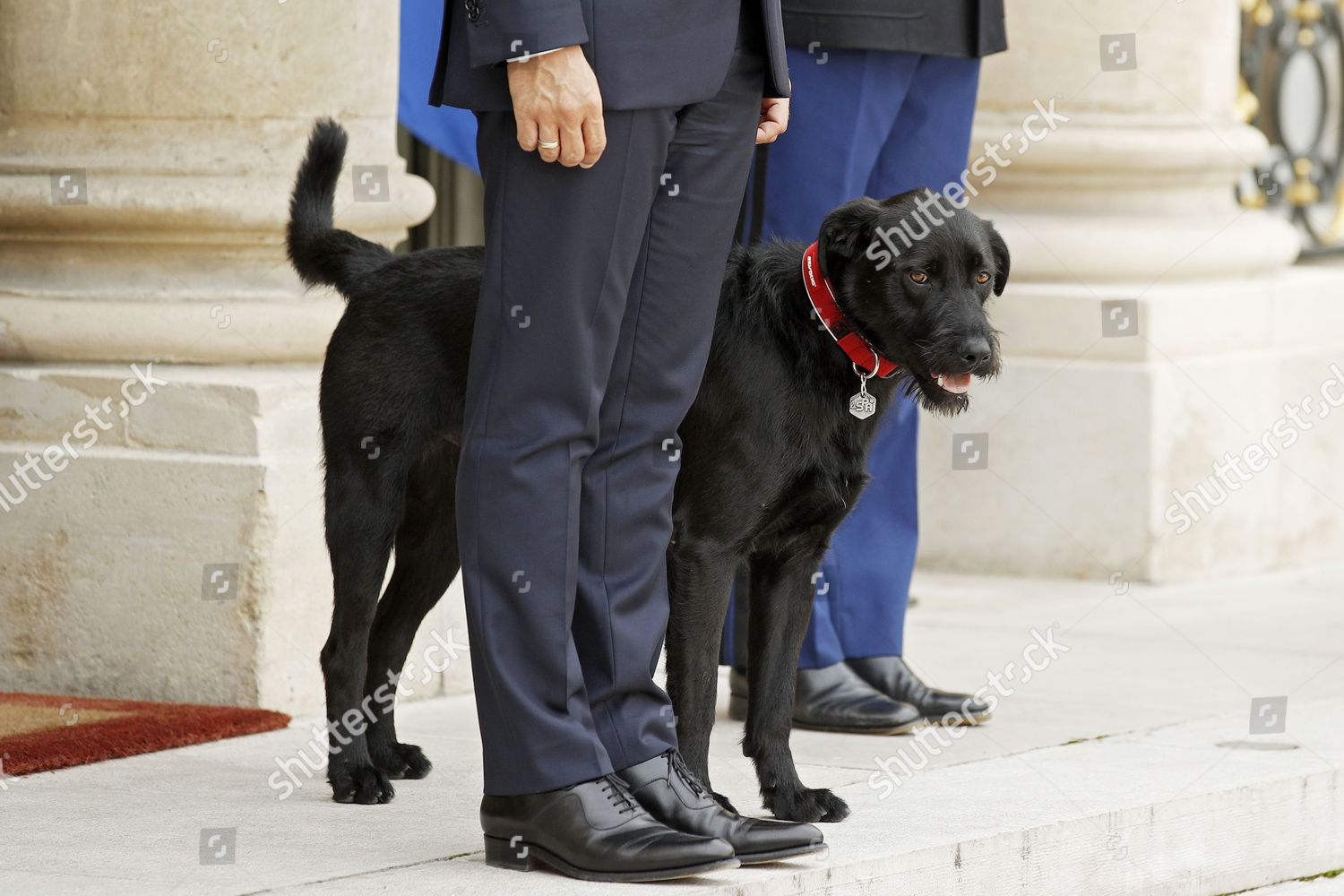 French President Emmanuel Macron Front His Dog Editorial Stock Photo Stock Image Shutterstock