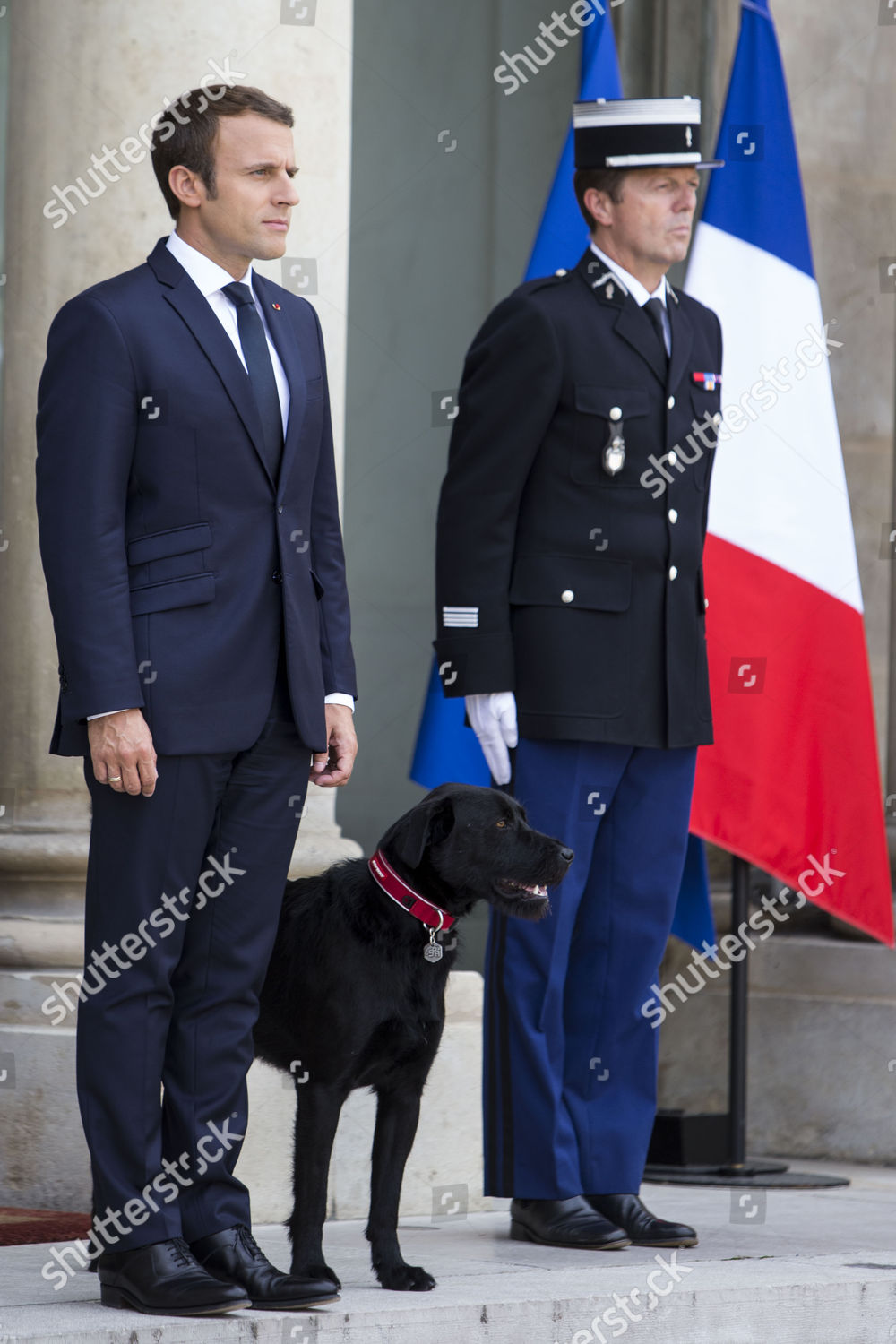 Emmanuel Macron Flanked By Dog Named Nemo Editorial Stock Photo Stock Image Shutterstock