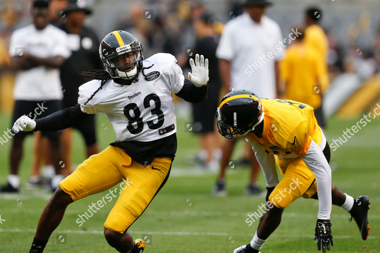 8327a638b4e Pittsburgh Steelers wide receiver Cobi Hamilton 83 Editorial Stock ...