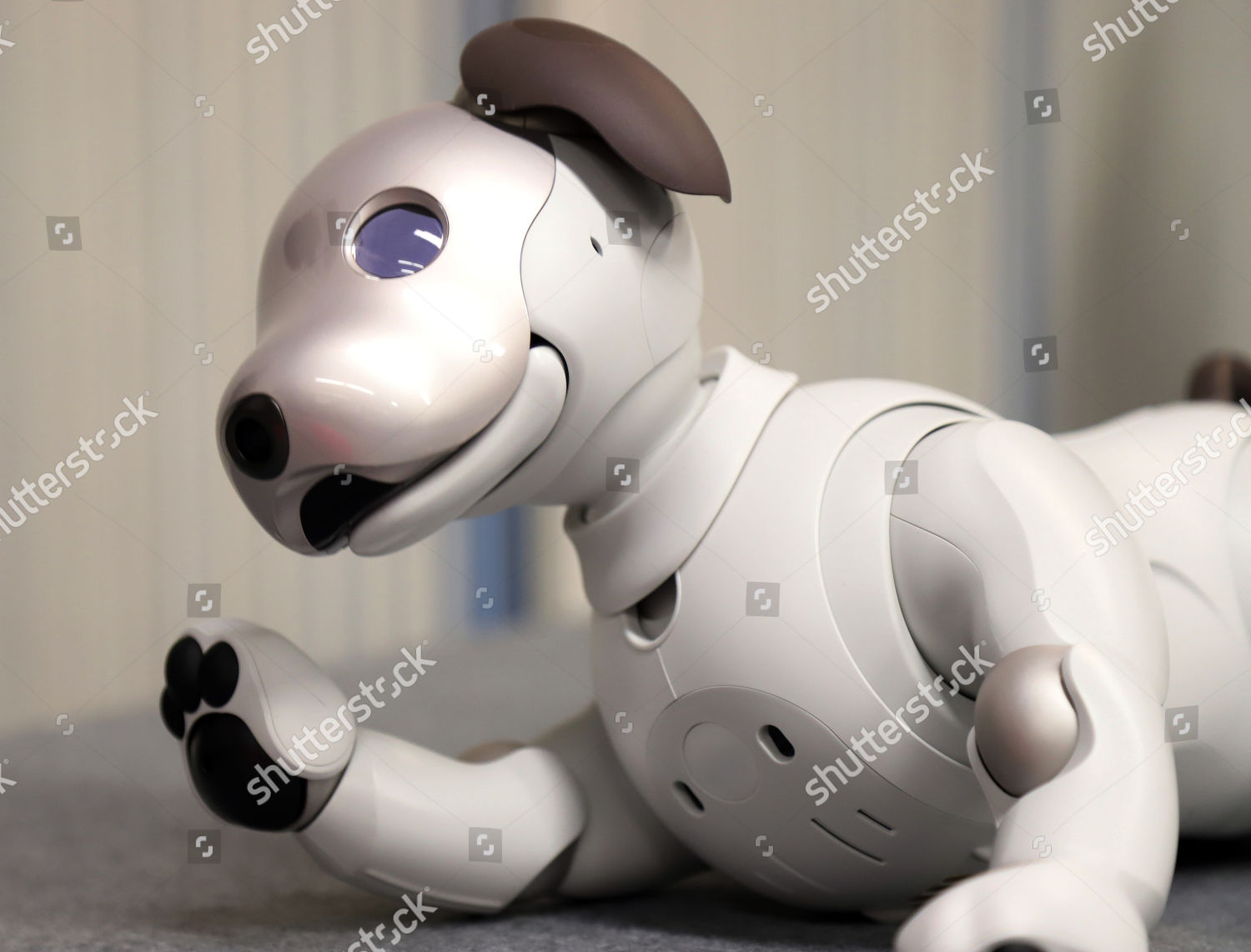 Launch Sony robot dog Aibo ERS1000 Editorial Stock Photo